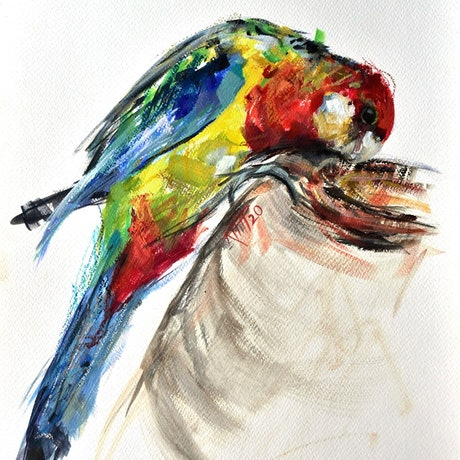 (CreativeWork) Rosella 2 by Rebecca Hill. Mixed Media. Shop online at Bluethumb.