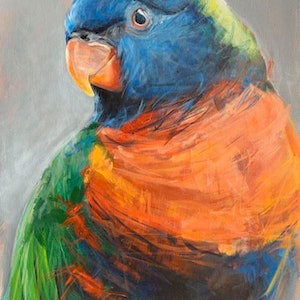 (CreativeWork) Lori - Rainbow Lorikeet by Rebecca Hill. #<Filter:0x00007f1f97004570>. Shop online at Bluethumb.