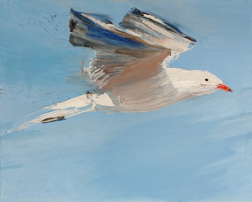 (CreativeWork) Seagull by Roland Weight. Oil Paint. Shop online at Bluethumb.