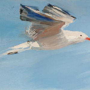 (CreativeWork) Seagull by Roland Weight. #<Filter:0x00007fbcb0d4d608>. Shop online at Bluethumb.