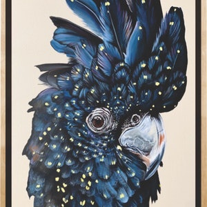 """(CreativeWork) """"Carmen"""" The red tailed black cockatoo by HEYLIE MORRIS. Acrylic Paint. Shop online at Bluethumb."""
