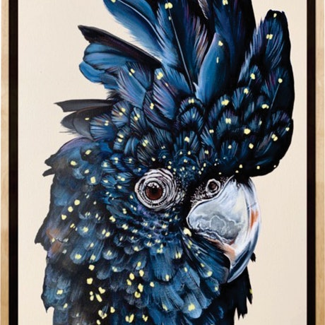 "(CreativeWork) ""Carmen"" The red tailed black cockatoo by HEYLIE MORRIS. Acrylic Paint. Shop online at Bluethumb."