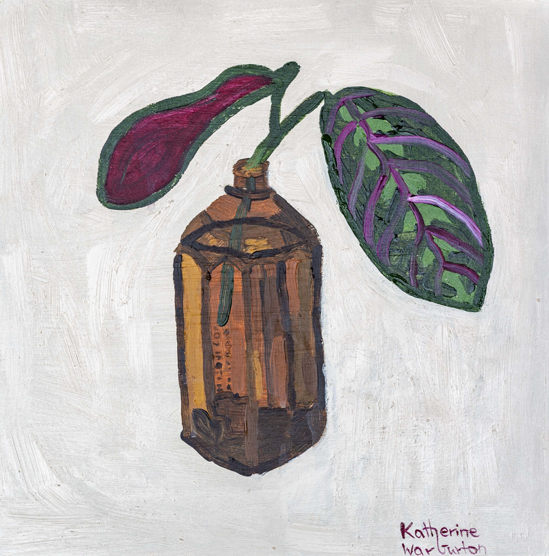 (CreativeWork) Prayer Plant in an Amber Jar by Katherine Warburton. Oil Paint. Shop online at Bluethumb.