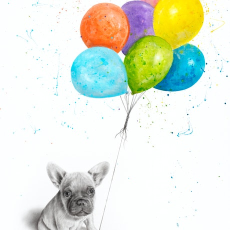 (CreativeWork) Little Frenchie and The Balloons by Ashvin Harrison. Acrylic Paint. Shop online at Bluethumb.