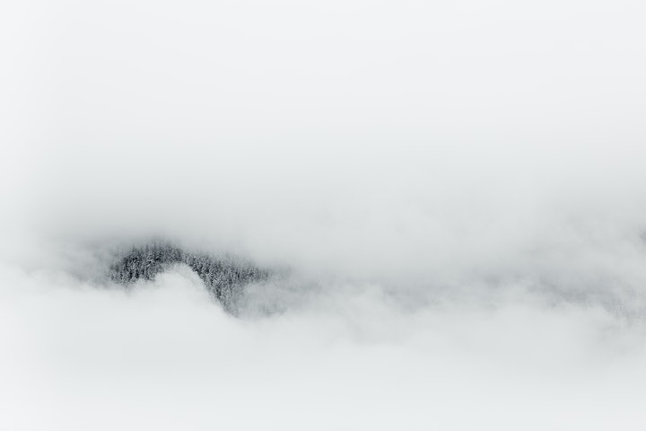 (CreativeWork) Winter Fog 1 Ed. 1 of 50 by Penny Prangnell. Photograph. Shop online at Bluethumb.