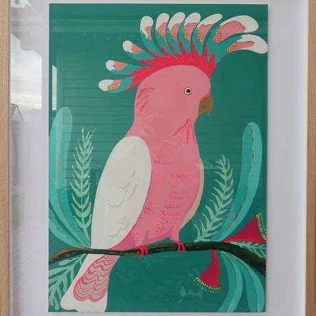 (CreativeWork) Pretty Pink Galah by emma whitelaw. Acrylic Paint. Shop online at Bluethumb.
