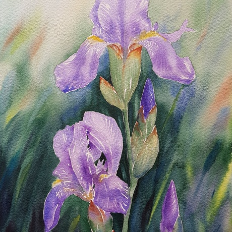 (CreativeWork) Splendid Irises - Watercolour by Natasha Junmanee. Watercolour Paint. Shop online at Bluethumb.