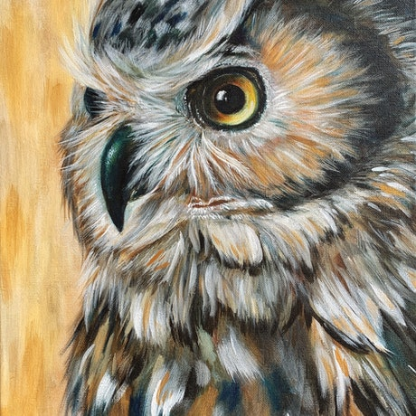 (CreativeWork) Owl on gold by Eva Chen. Acrylic Paint. Shop online at Bluethumb.