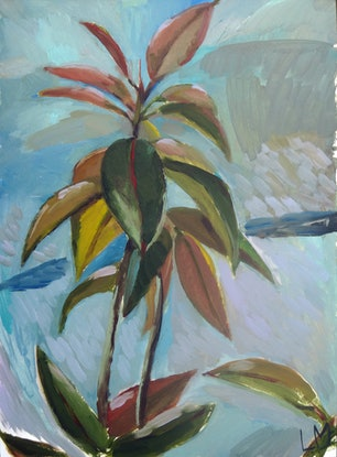 (CreativeWork) Rubber Plant by Liza Merkalova. Oil Paint. Shop online at Bluethumb.