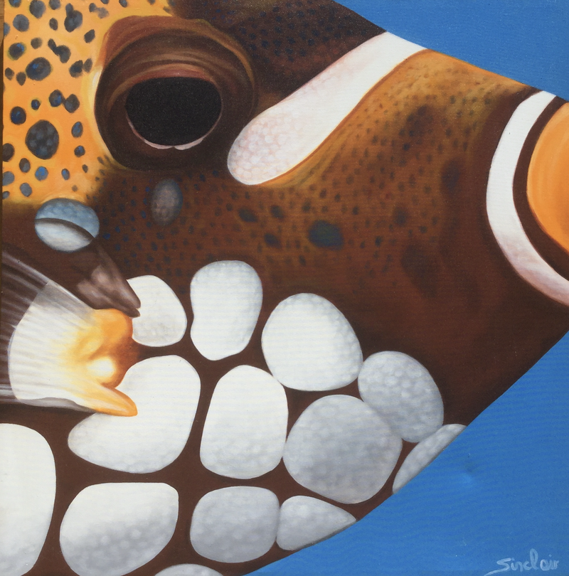 (CreativeWork) Clown trigger fish by Mark Sinclair. Acrylic Paint. Shop online at Bluethumb.