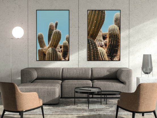 (CreativeWork) Cactus and the sun Ed. 1 of 20 by Agus Gago. Photograph. Shop online at Bluethumb.