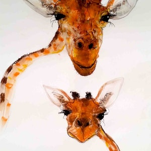 (CreativeWork) Giraffe - Mother and Child series by John Graham. #<Filter:0x0000562d1d83f4f0>. Shop online at Bluethumb.