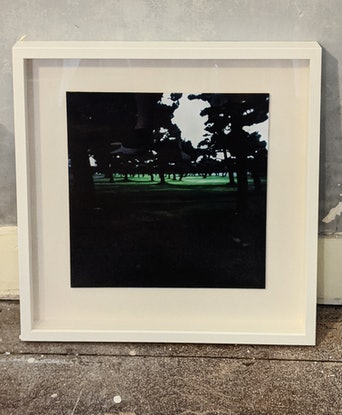 (CreativeWork) Untitled (Imperial Gardens), Japan Ed. 3 of 9 by Valentina Schulte. Photograph. Shop online at Bluethumb.