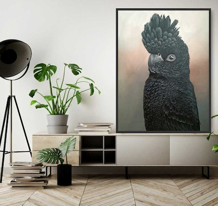 (CreativeWork) Elvis The Red Tailed Black Cockatoo   by Amanda Skye. Acrylic Paint. Shop online at Bluethumb.