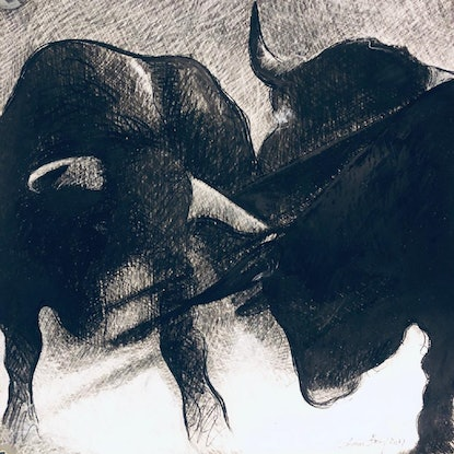 (CreativeWork) Bull Fight 2 by Shabs Beigh. Drawings. Shop online at Bluethumb.