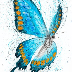 (CreativeWork) Fresh Morning Butterfly by Ashvin Harrison. #<Filter:0x00007fe9a1e8b830>. Shop online at Bluethumb.