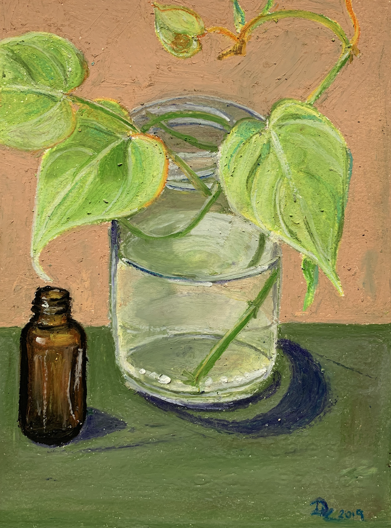 (CreativeWork) Lime Philodendron Cutting & Medicine Bottle by Dominika Keller. Drawings. Shop online at Bluethumb.