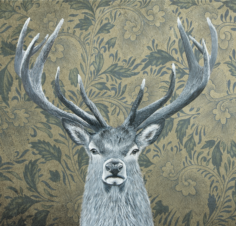 (CreativeWork) There is a Deer in The House Ed. 21 of 100 by Johanna Larkin. Print. Shop online at Bluethumb.