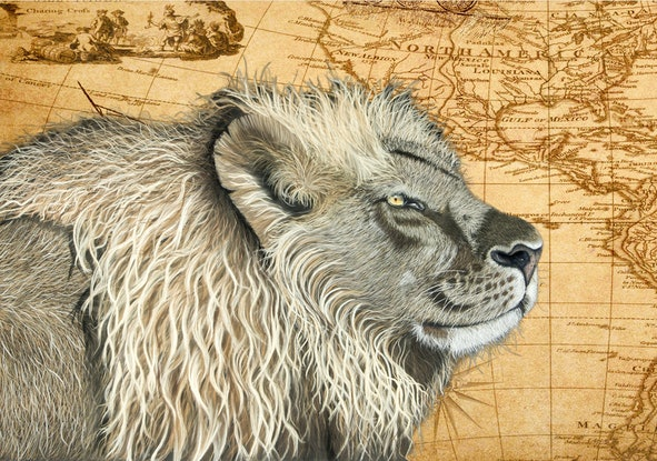 (CreativeWork) King of the world - Lion on map background Ed. 20 of 100 by Johanna Larkin. Print. Shop online at Bluethumb.