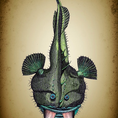 (CreativeWork) Fish Eating  Man. Edition 1/10. by Sarah Mitchell. Mixed Media. Shop online at Bluethumb.