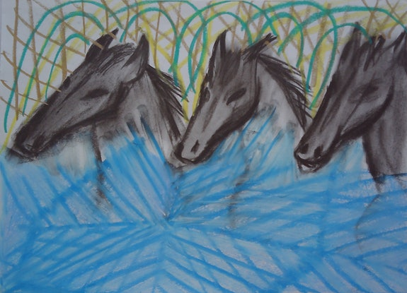 (CreativeWork) HORSE WATER BLESSINGS. by Paula Reilly. Drawings. Shop online at Bluethumb.