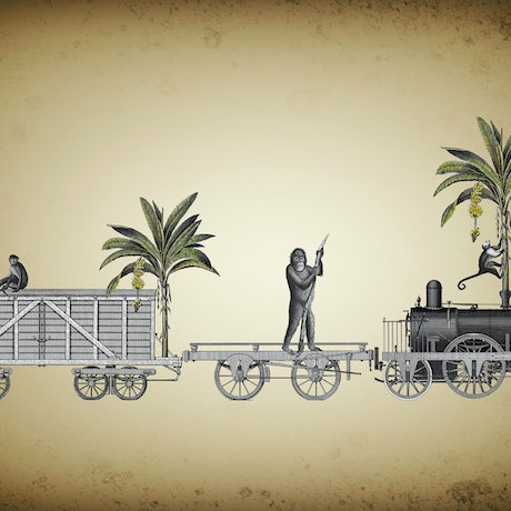 (CreativeWork) The Banana Train. 1/1. by Sarah Mitchell. Other Media. Shop online at Bluethumb.