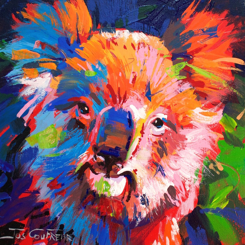 (CreativeWork) Koala by Jos Coufreur. Acrylic Paint. Shop online at Bluethumb.