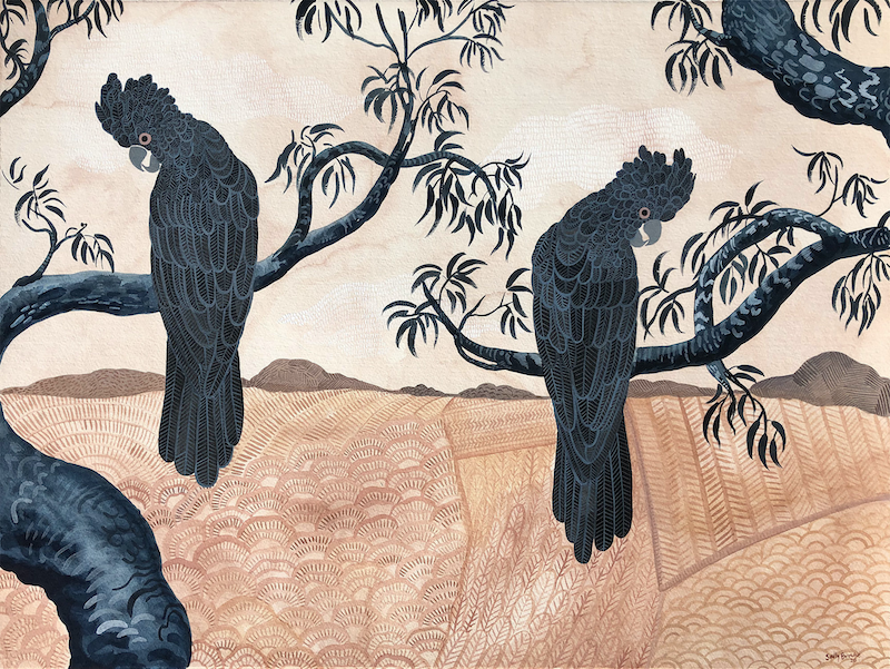 (CreativeWork) Glossy Black Cockatoos and Parched Landscape by Sally Browne. Watercolour Paint. Shop online at Bluethumb.