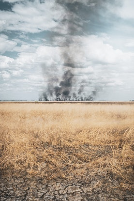 (CreativeWork) Fire Ed. 1 of 3 by Forest Harder. Photograph. Shop online at Bluethumb.