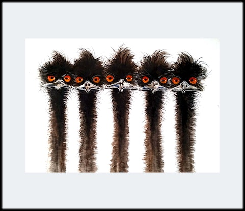 (CreativeWork) 5 Emu - Sibling series  by John Graham. Mixed Media. Shop online at Bluethumb.