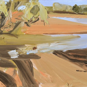 (CreativeWork) Lake at Fowlers Gap by Lise Temple. Oil Paint. Shop online at Bluethumb.