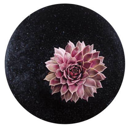 (CreativeWork) Succulent Study #6 by Casey Thornton. Oil Paint. Shop online at Bluethumb.