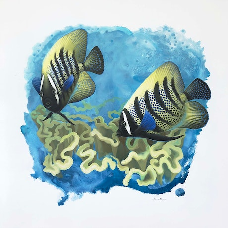 (CreativeWork) When Angels Dance - Angelfish on a Coral Reef by Jenny Berry. Acrylic Paint. Shop online at Bluethumb.