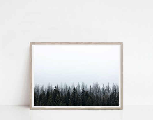 (CreativeWork) Winter Fog 5 Ed. 1 of 20 by Penny Prangnell. Photograph. Shop online at Bluethumb.