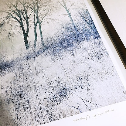 (CreativeWork) Winter Morning #1 (SALE) Ed. 1 of 1 by Mat Hughes. Photograph. Shop online at Bluethumb.