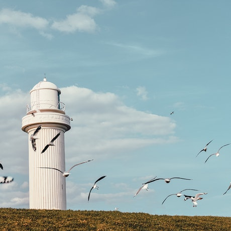 (CreativeWork) Lighthouse and birds Ed. 1 of 30 by Agus Gago. Photograph. Shop online at Bluethumb.