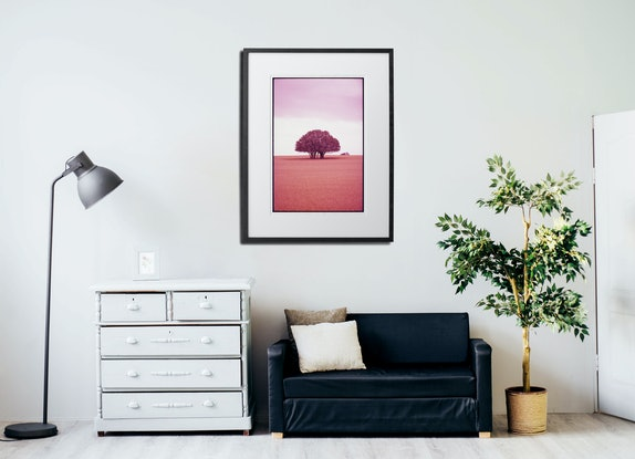(CreativeWork) A Stand - Portrait Ed. 1 of 9 by Damian Seagar. Photograph. Shop online at Bluethumb.