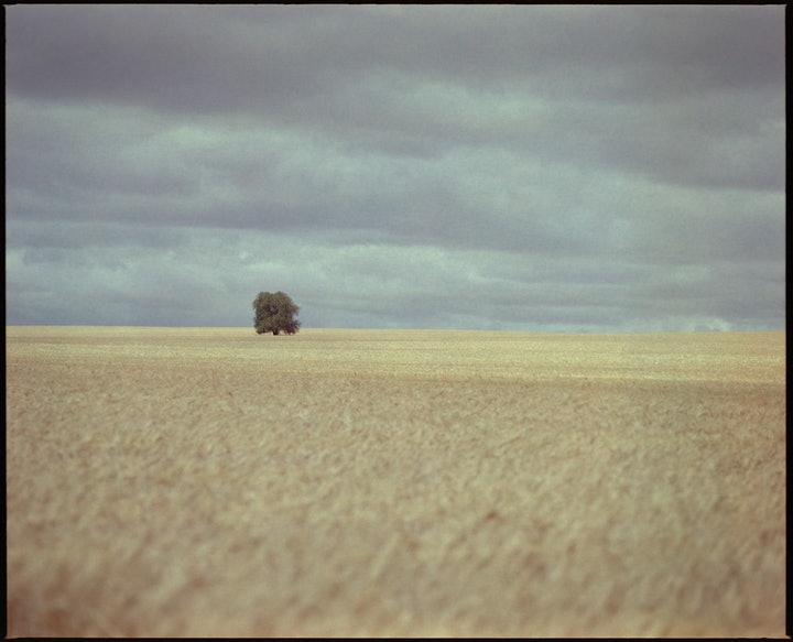 (CreativeWork) Between the Grass and Clouds Ed. 1 of 9 by Damian Seagar. Photograph. Shop online at Bluethumb.