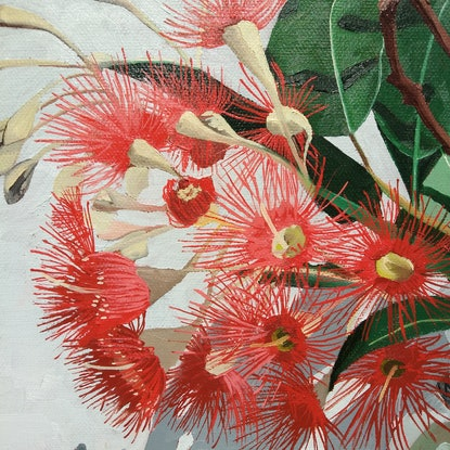 (CreativeWork) Red gum 2 by Sandra Jenkins. Oil Paint. Shop online at Bluethumb.