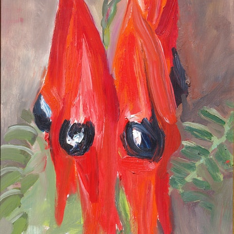 (CreativeWork) Sturt Desert Pea by Roland Weight. Oil Paint. Shop online at Bluethumb.