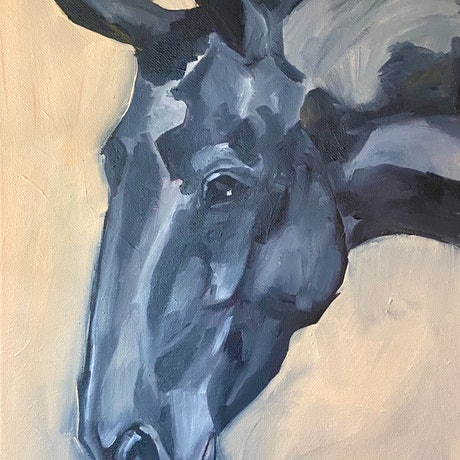 (CreativeWork) Black Horse Study by Antoinette Stokell. Oil Paint. Shop online at Bluethumb.