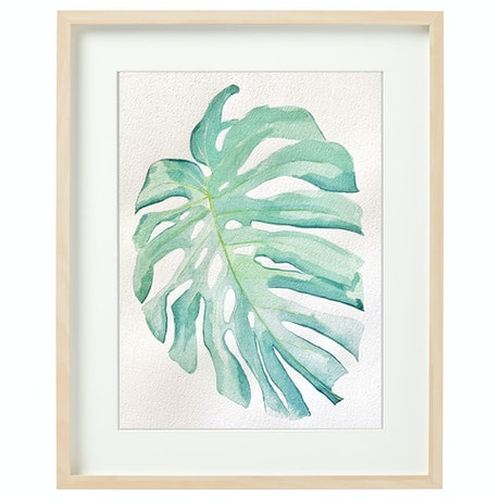 (CreativeWork) Monstera I by @theplant _kingdom. Watercolour Paint. Shop online at Bluethumb.