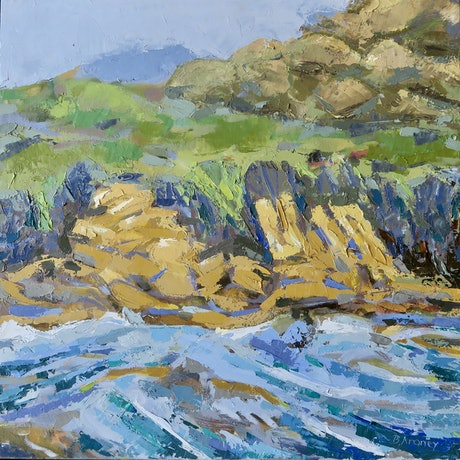 (CreativeWork) Coastal Freedom - Framed by Barbara Aroney. Oil Paint. Shop online at Bluethumb.