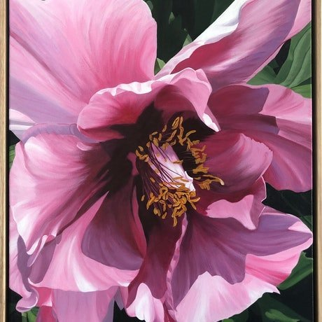 (CreativeWork) Pink Peony Framed by Patricia Hillard. Acrylic Paint. Shop online at Bluethumb.