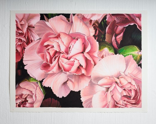 (CreativeWork) Shades of pink by Erin Nicholls. Drawings. Shop online at Bluethumb.