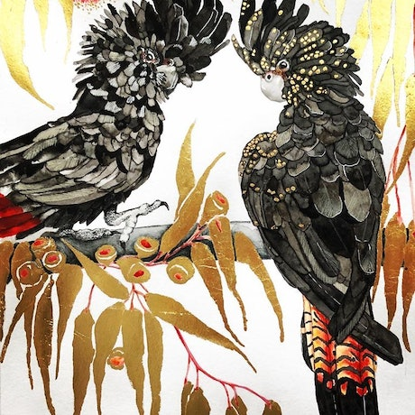 (CreativeWork) Black Cockatoos by Wilna ten Cate. Mixed Media. Shop online at Bluethumb.
