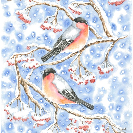 (CreativeWork) Bullfinch in snow by Girija Kulkarni. Watercolour Paint. Shop online at Bluethumb.