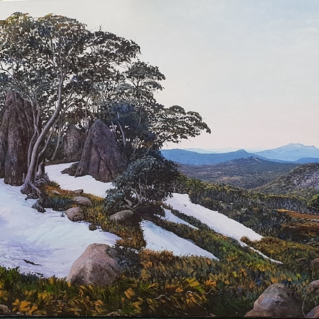 (CreativeWork) LAST LIGHT IN NAMADGI NATIONAL PARK by Margaret HADFIELD. Oil Paint. Shop online at Bluethumb.