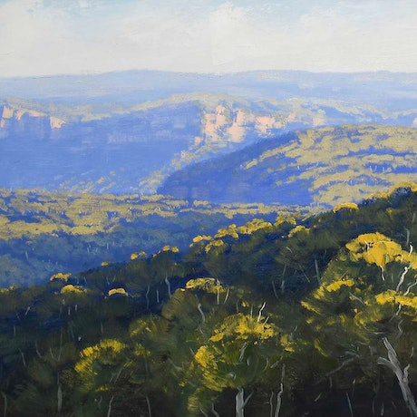 (CreativeWork) Blue Mountains Afternoon light Grose Valley,  nsw by Graham Gercken. Oil Paint. Shop online at Bluethumb.