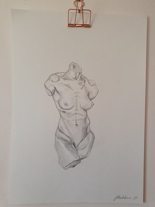 (CreativeWork) Female Torso by Jasmine Radakovic. Drawings. Shop online at Bluethumb.